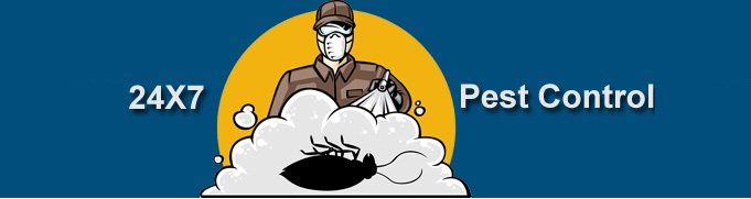 24x7 Pest Control Gurgaon